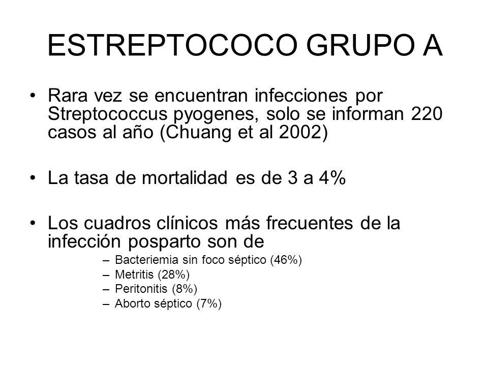 ESTREPTOCOCO GRUPO A Rara vez se encuentran infecciones por Streptococcus pyogenes, solo se informan 220 casos al año (Chuang et al 2002)