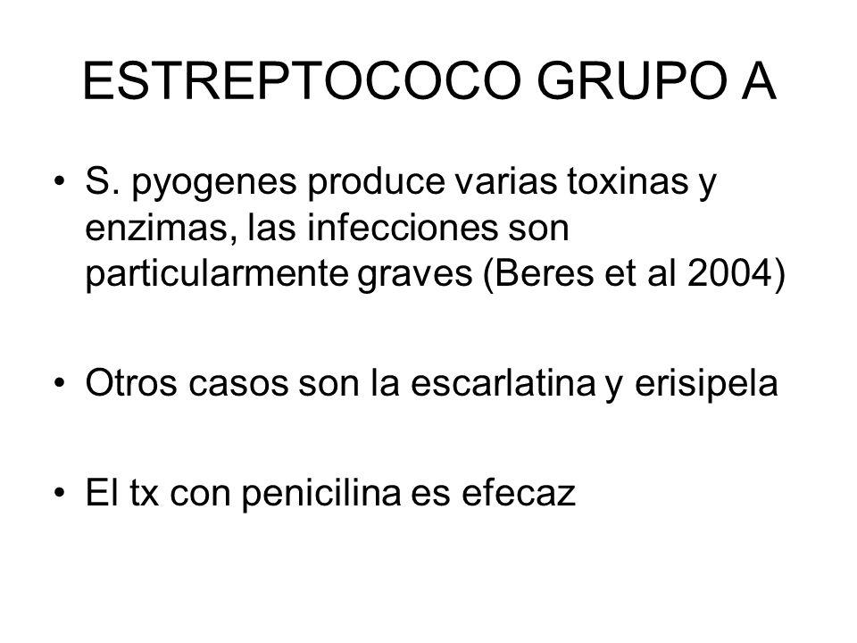 ESTREPTOCOCO GRUPO A S. pyogenes produce varias toxinas y enzimas, las infecciones son particularmente graves (Beres et al 2004)