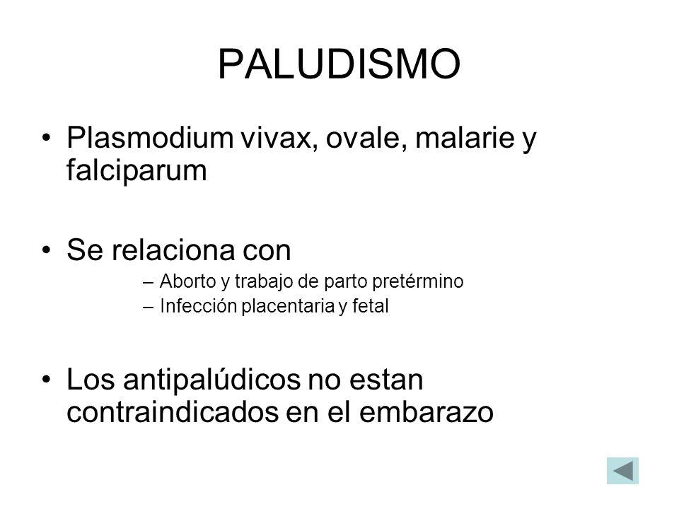 PALUDISMO Plasmodium vivax, ovale, malarie y falciparum