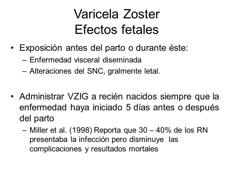 Varicela Zoster Efectos fetales