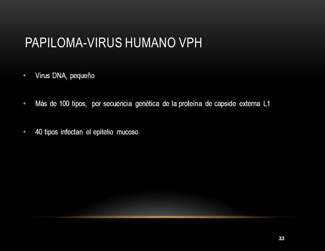Papiloma-virus Humano VPH