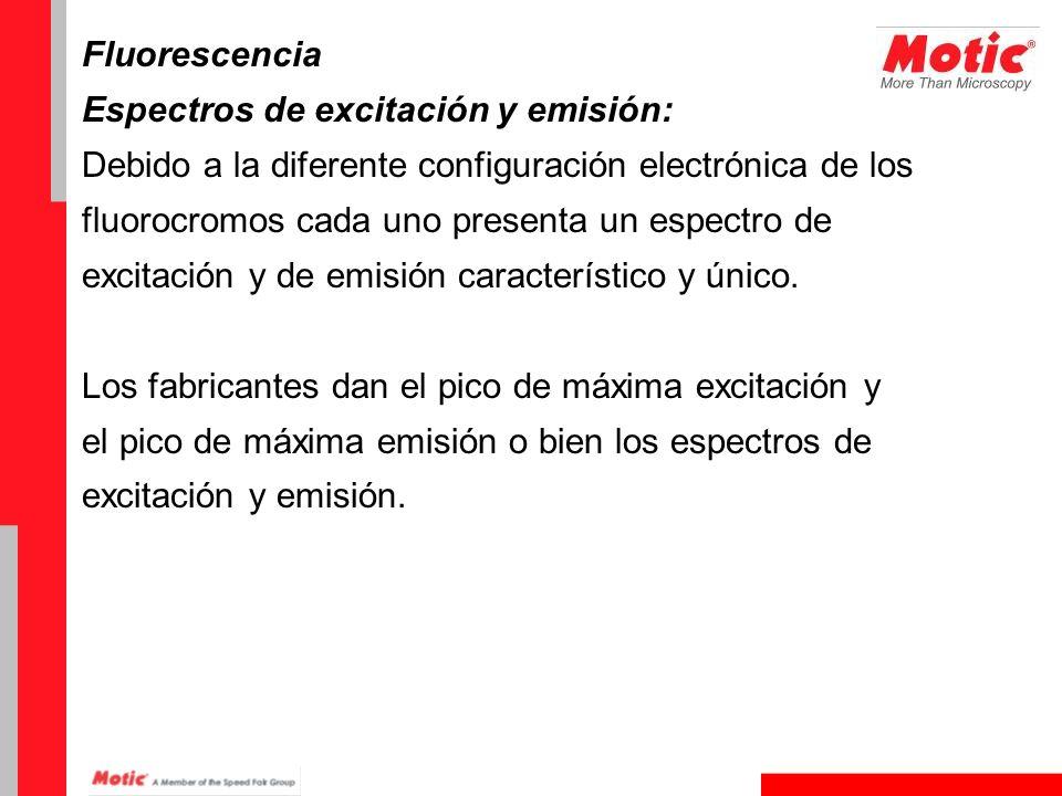 Fluorescencia Espectros de excitación y emisión: Debido a la diferente configuración electrónica de los.