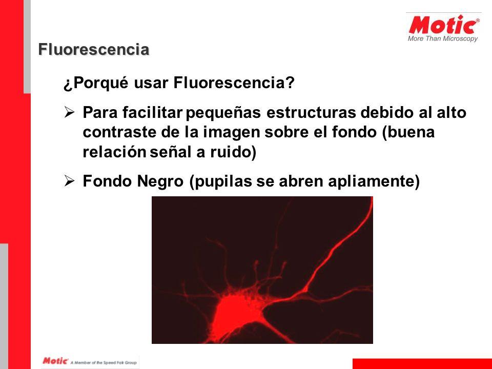 Fluorescencia ¿Porqué usar Fluorescencia