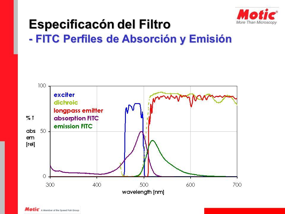 Especificacón del Filtro