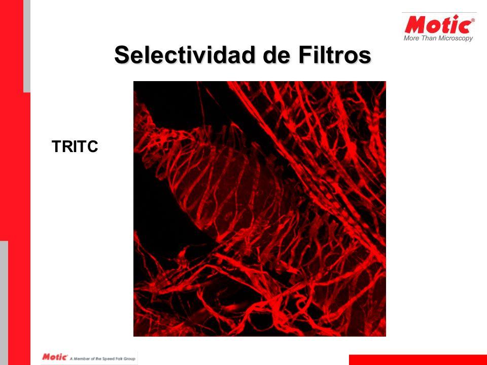 Selectividad de Filtros