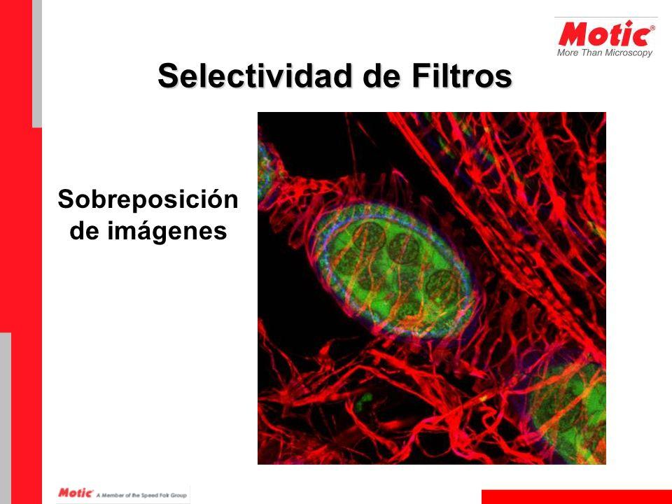 Selectividad de Filtros Sobreposición de imágenes