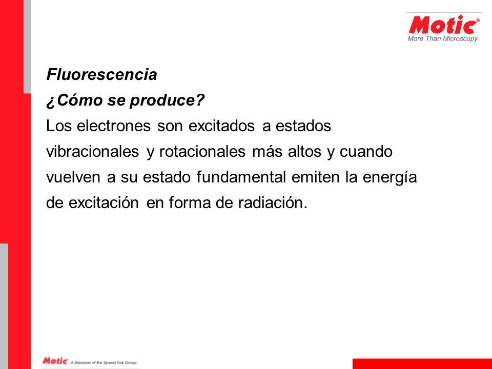 Fluorescencia ¿Cómo se produce Los electrones son excitados a estados. vibracionales y rotacionales más altos y cuando.