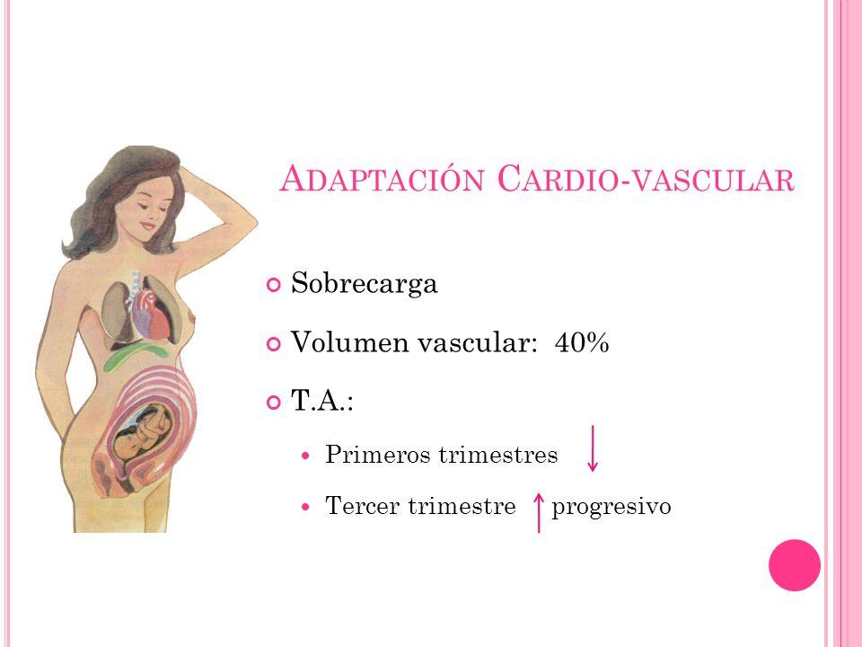 Adaptación Cardio-vascular