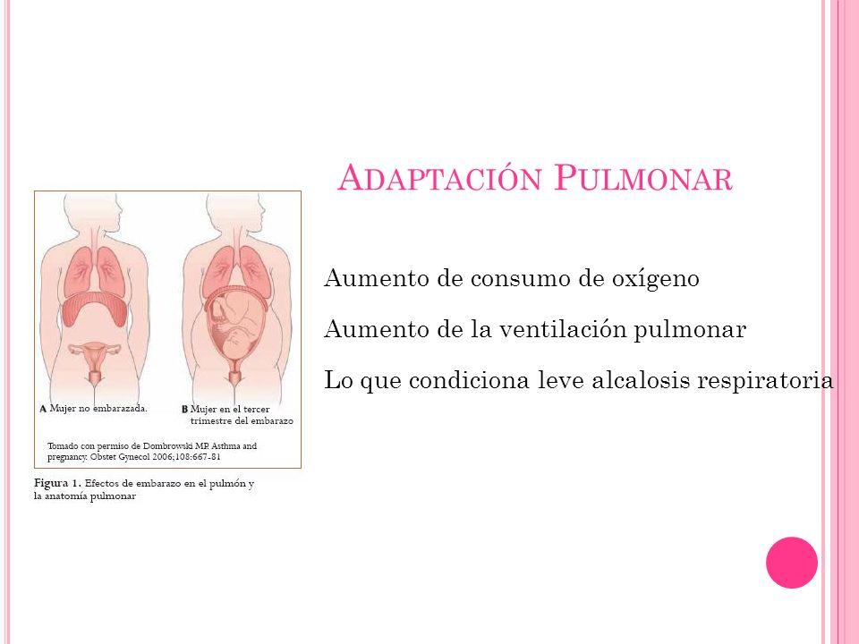 Adaptación Pulmonar Aumento de consumo de oxígeno