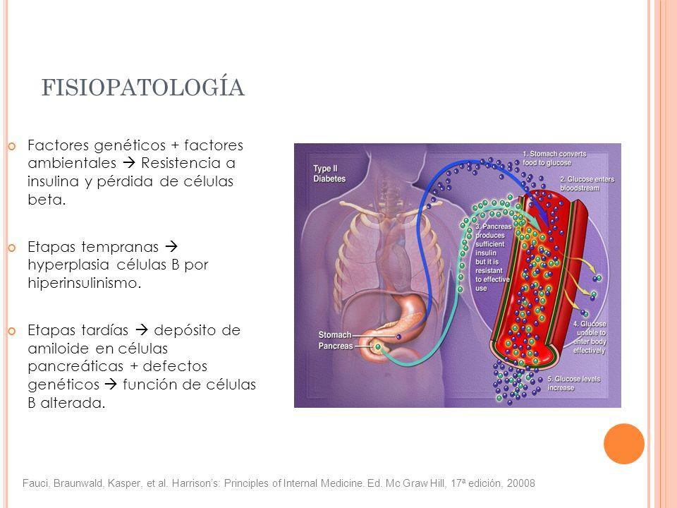 fisiopatología Factores genéticos + factores ambientales  Resistencia a insulina y pérdida de células beta.