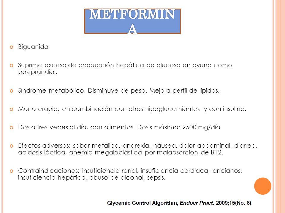 METFORMINA Biguanida. Suprime exceso de producción hepática de glucosa en ayuno como postprandial.