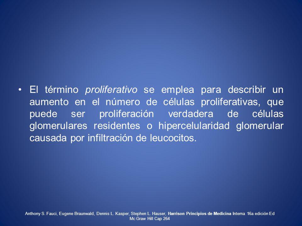 El término proliferativo se emplea para describir un aumento en el número de células proliferativas, que puede ser proliferación verdadera de células glomerulares residentes o hipercelularidad glomerular causada por infiltración de leucocitos.