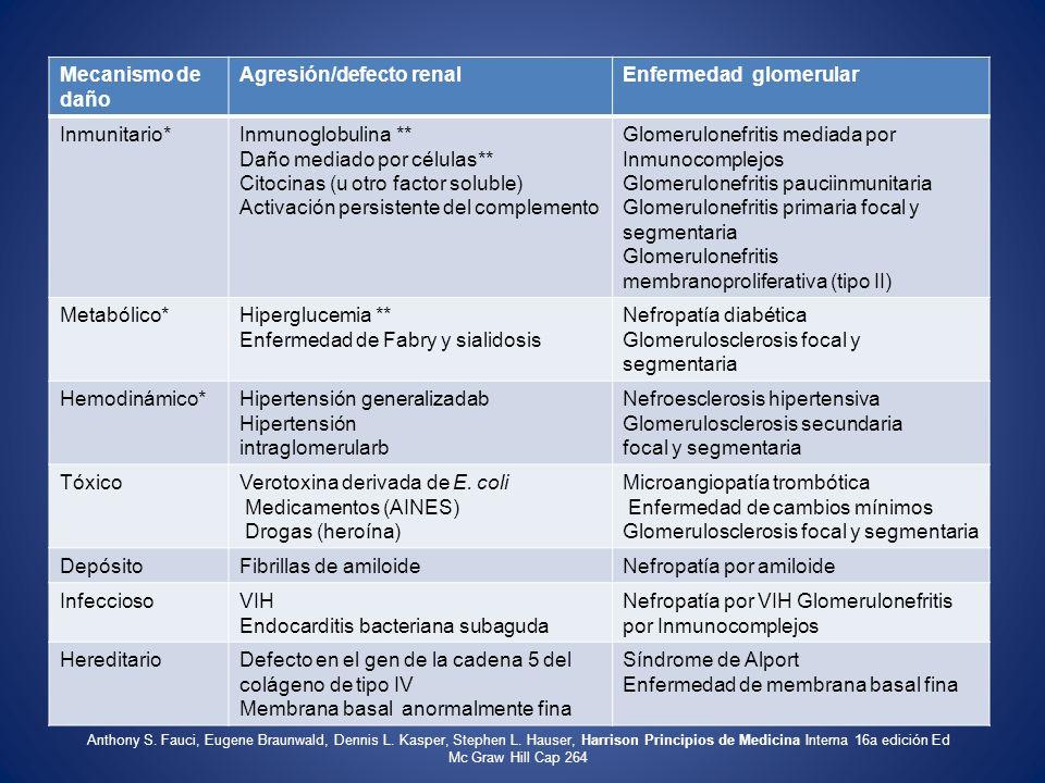Agresión/defecto renal Enfermedad glomerular Inmunitario*