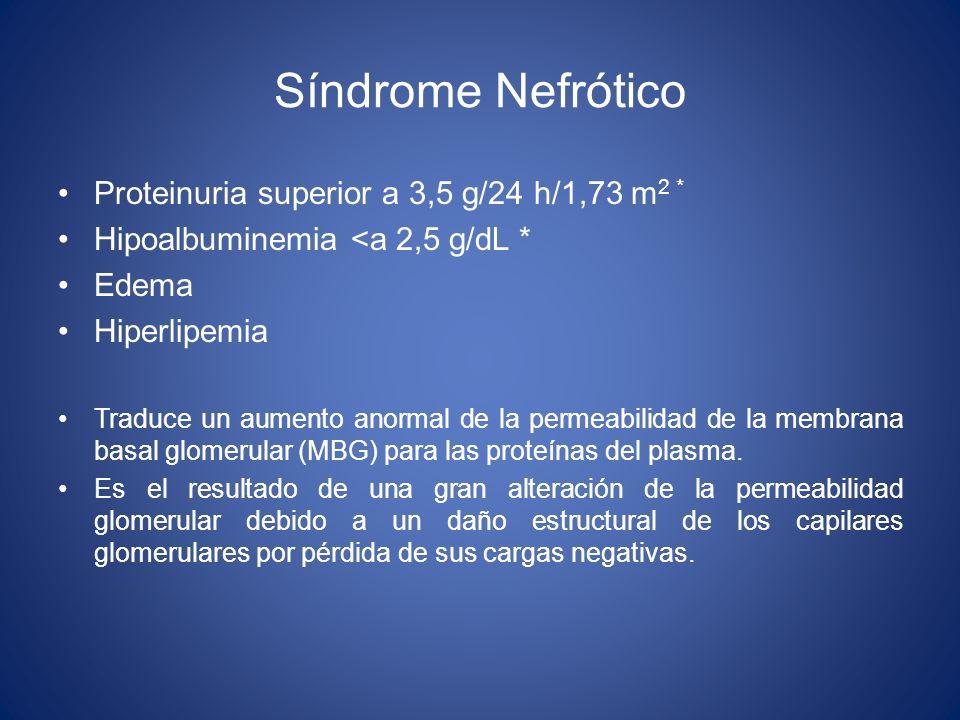 Síndrome Nefrótico Proteinuria superior a 3,5 g/24 h/1,73 m2 *