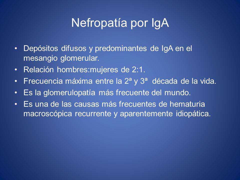 Nefropatía por IgA Depósitos difusos y predominantes de IgA en el mesangio glomerular. Relación hombres:mujeres de 2:1.