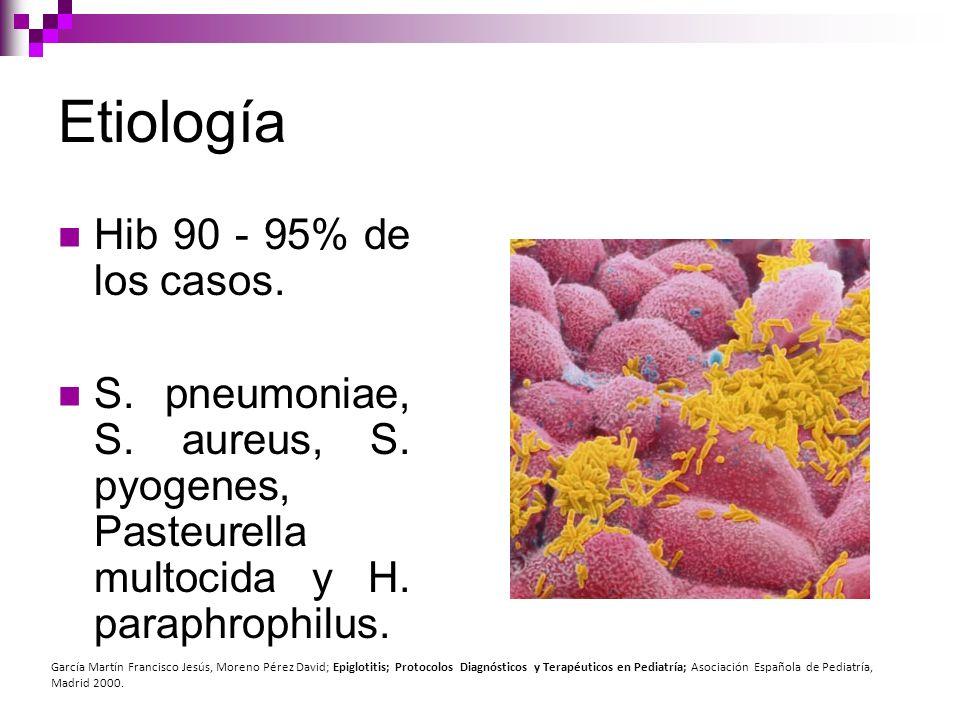 Etiología Hib 90 - 95% de los casos.