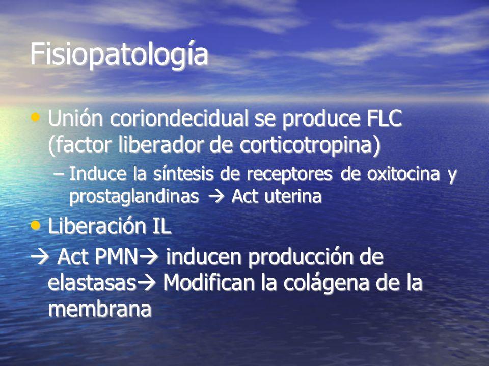 Fisiopatología Unión coriondecidual se produce FLC (factor liberador de corticotropina)