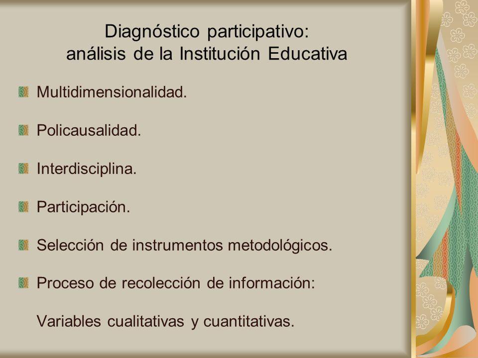 Diagnóstico participativo: análisis de la Institución Educativa