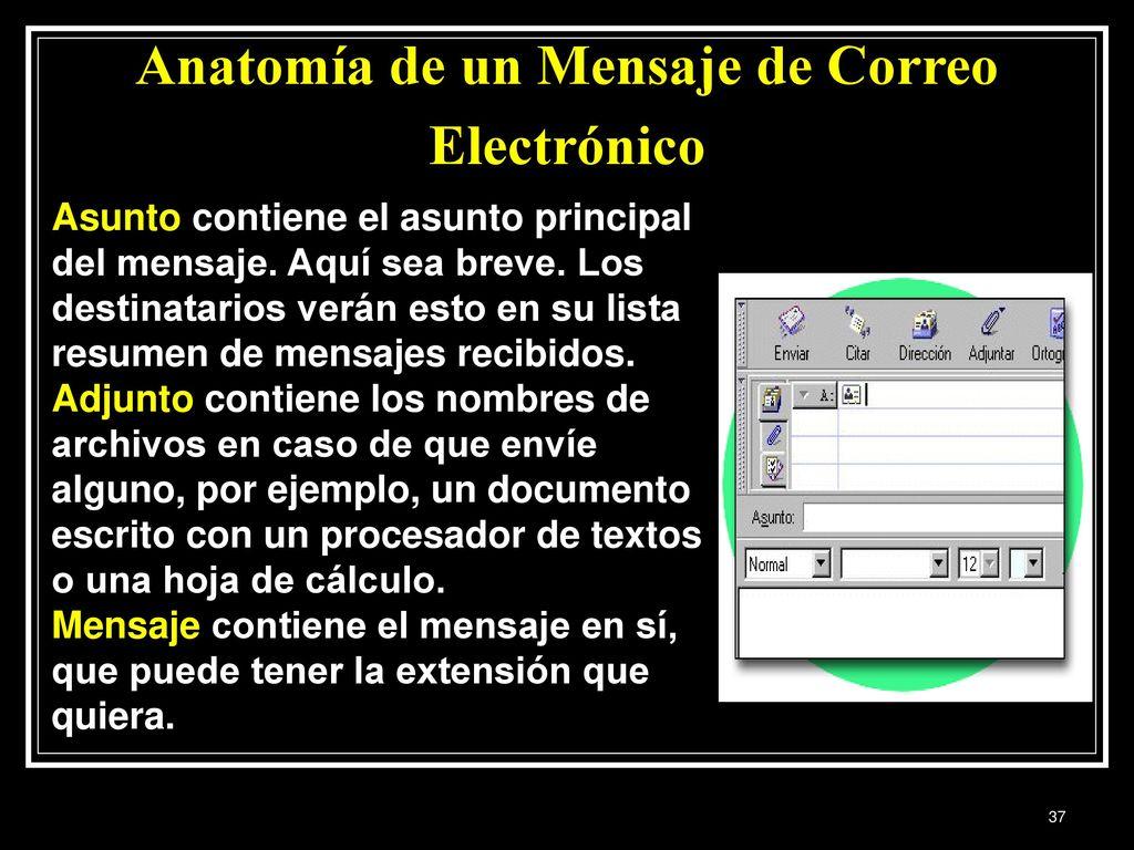 Moderno La Anatomía De Un Asunto Colección de Imágenes - Anatomía de ...