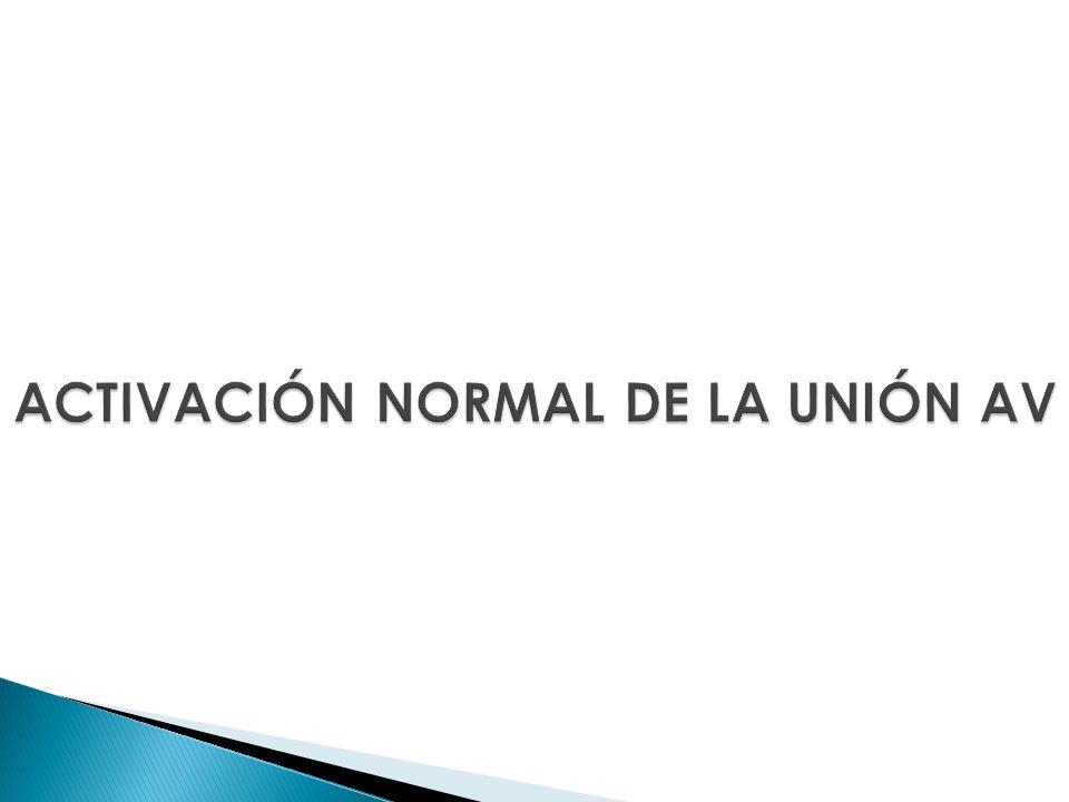 ACTIVACIÓN NORMAL DE LA UNIÓN AV