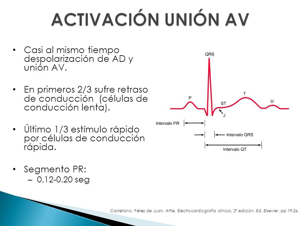 ACTIVACIÓN UNIÓN AV Casi al mismo tiempo despolarización de AD y unión AV.