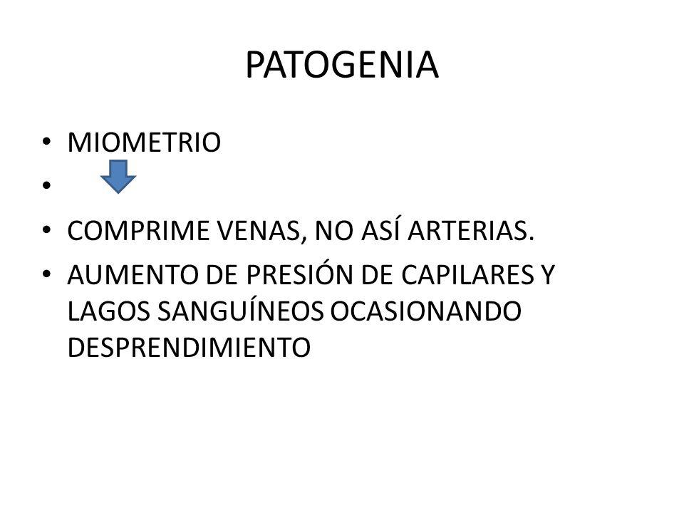 PATOGENIA MIOMETRIO COMPRIME VENAS, NO ASÍ ARTERIAS.