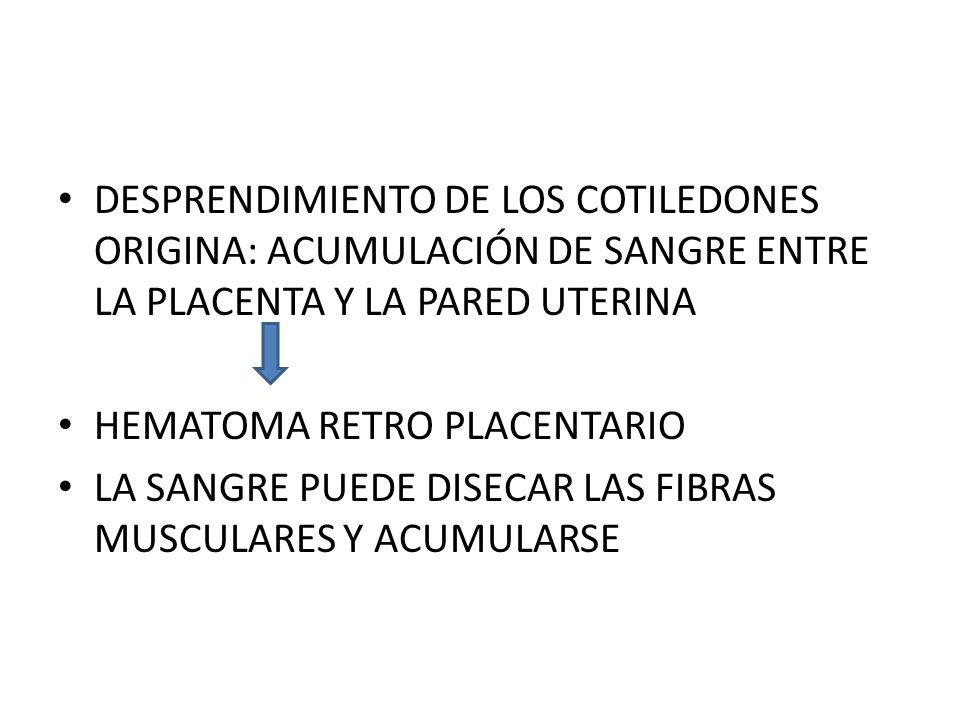 DESPRENDIMIENTO DE LOS COTILEDONES ORIGINA: ACUMULACIÓN DE SANGRE ENTRE LA PLACENTA Y LA PARED UTERINA