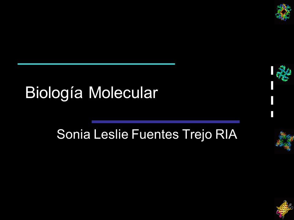 Sonia Leslie Fuentes Trejo RIA