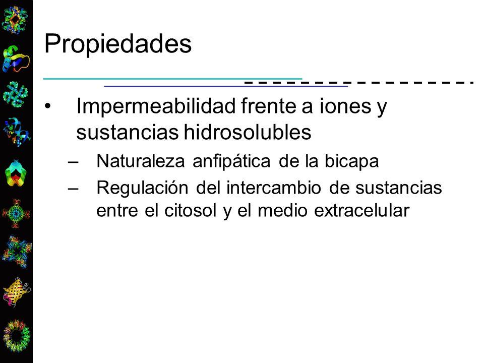 Propiedades Impermeabilidad frente a iones y sustancias hidrosolubles