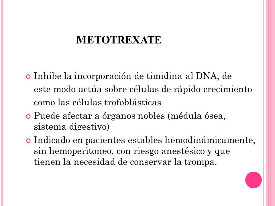 METOTrexate Inhibe la incorporación de timidina al DNA, de