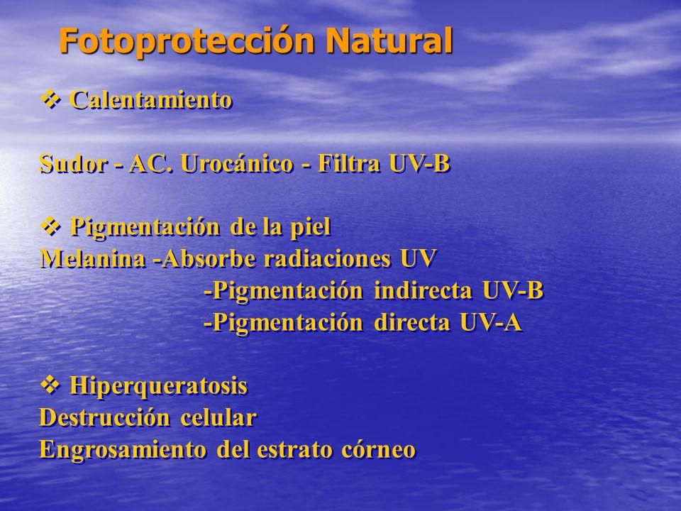 Fotoprotección Natural