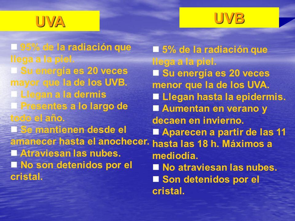 UVB UVA 95% de la radiación que llega a la piel.