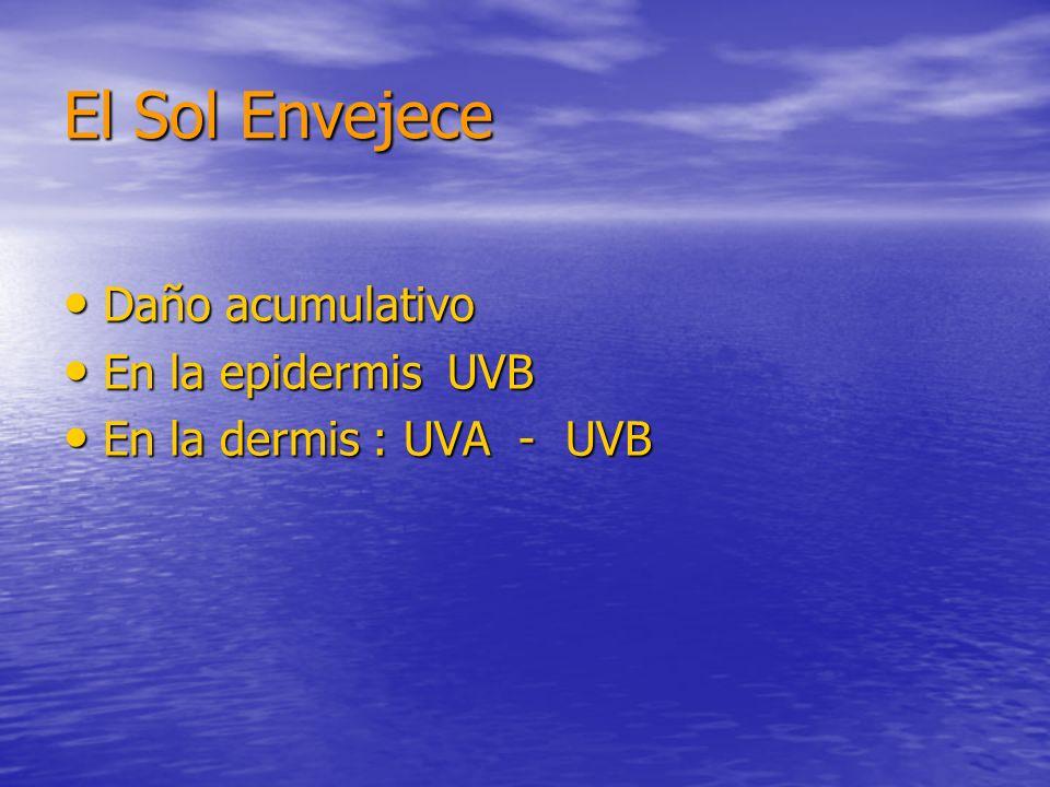 El Sol Envejece Daño acumulativo En la epidermis UVB