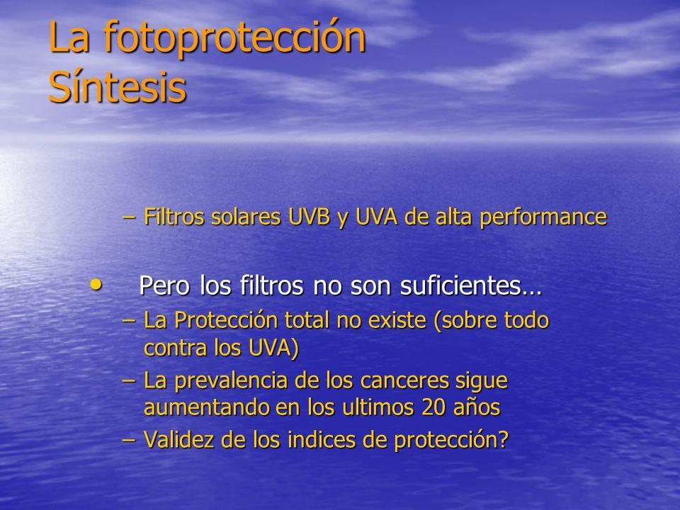 La fotoprotección Síntesis