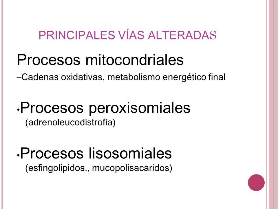 PRINCIPALES VÍAS ALTERADAS