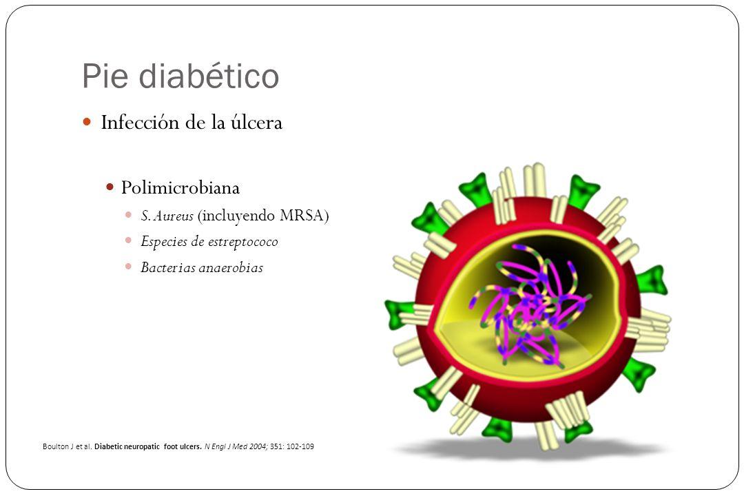 Pie diabético Infección de la úlcera Polimicrobiana