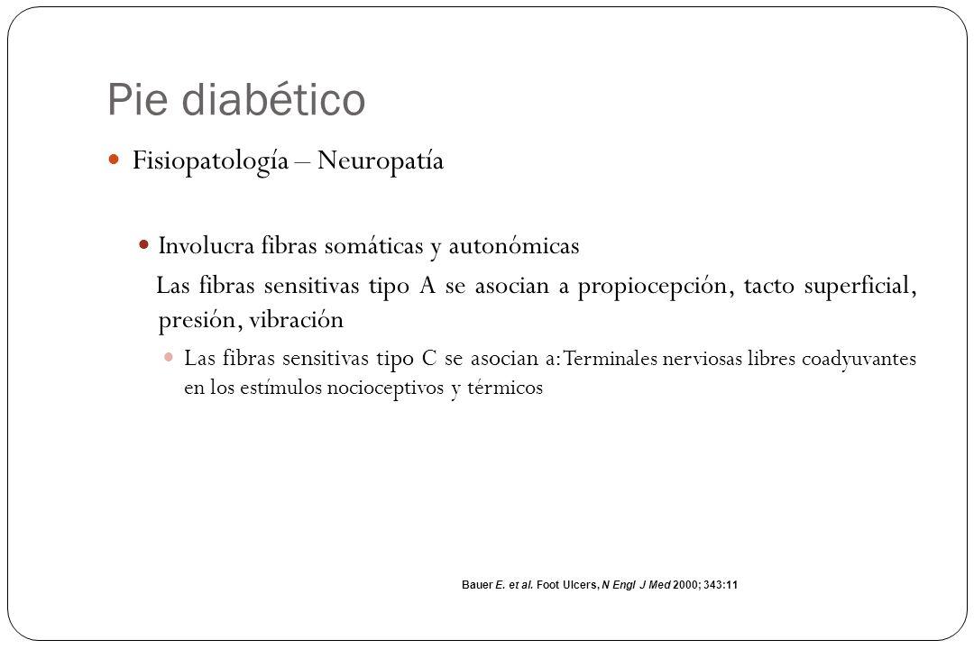 Pie diabético Fisiopatología – Neuropatía