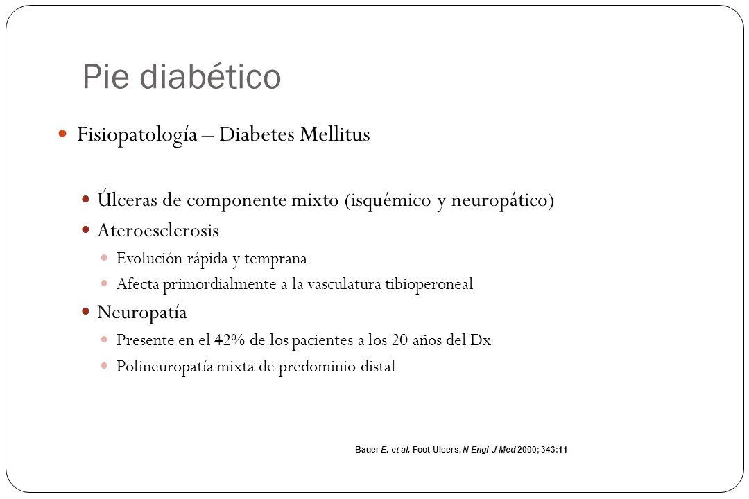 Pie diabético Fisiopatología – Diabetes Mellitus