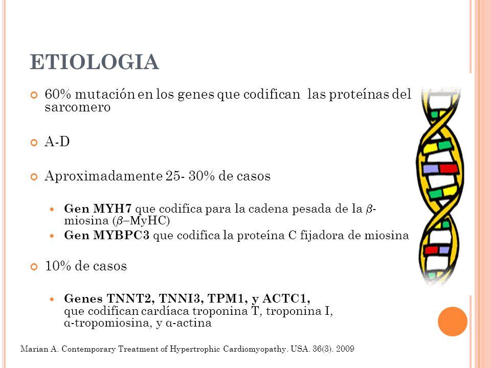 ETIOLOGIA 60% mutación en los genes que codifican las proteínas del sarcomero. A-D. Aproximadamente 25- 30% de casos.