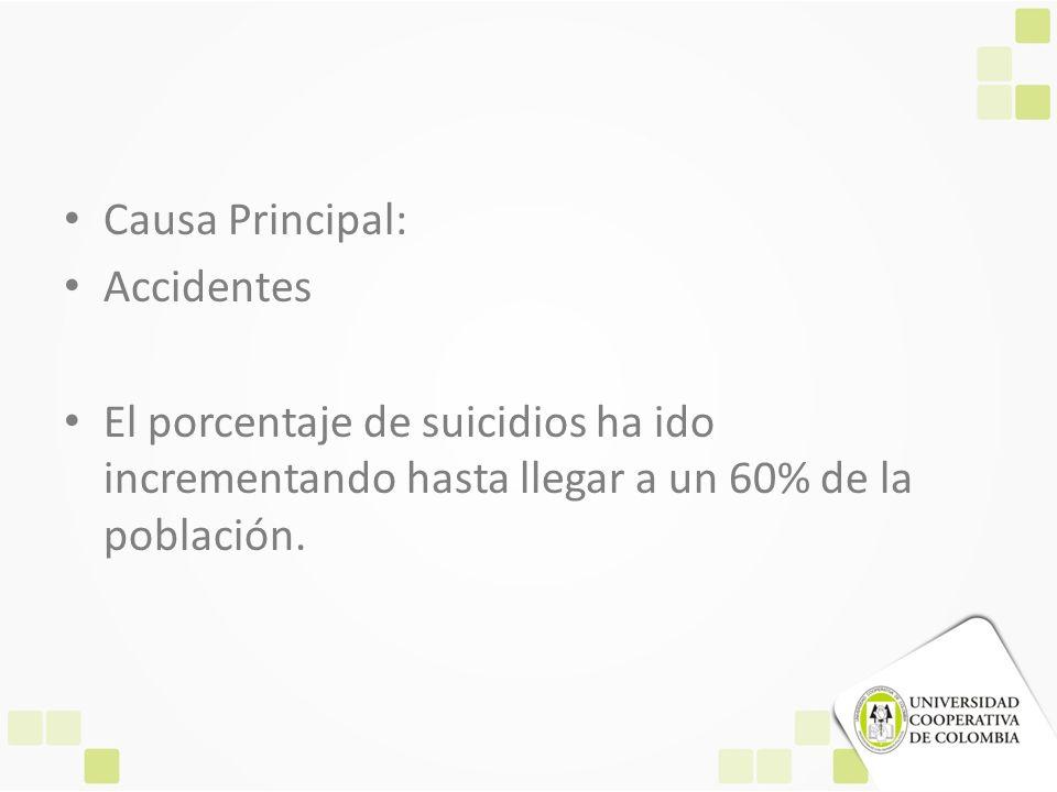 Causa Principal: Accidentes.