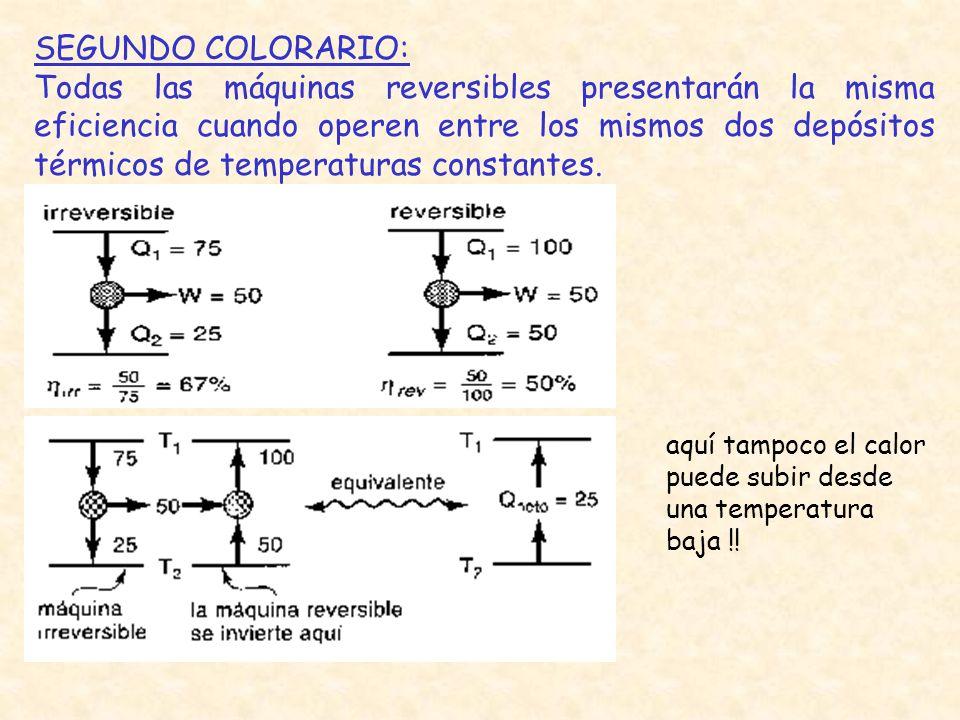 SEGUNDO COLORARIO:
