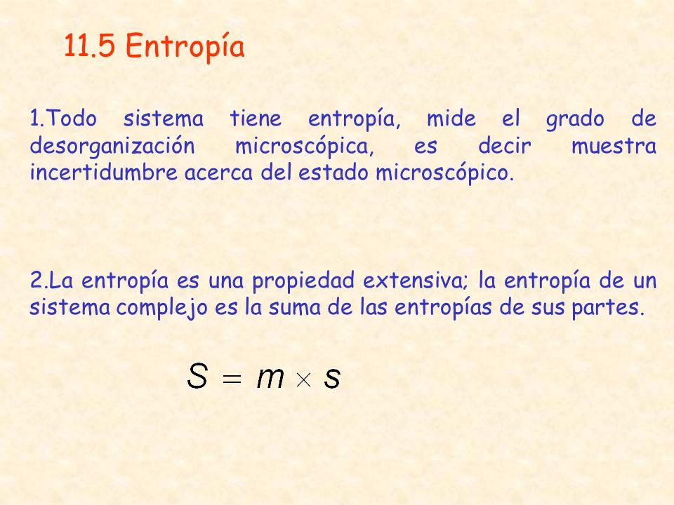 11.5 Entropía