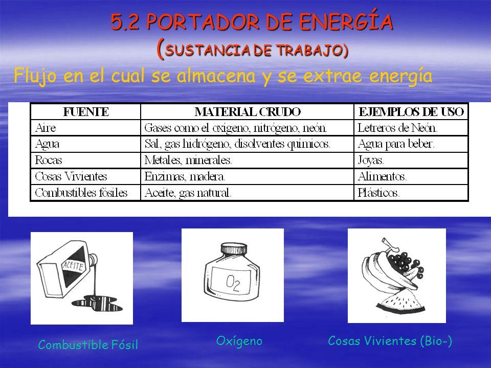 5.2 PORTADOR DE ENERGÍA (SUSTANCIA DE TRABAJO)
