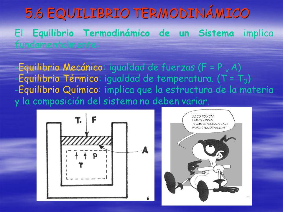 5.6 EQUILIBRIO TERMODINÁMICO