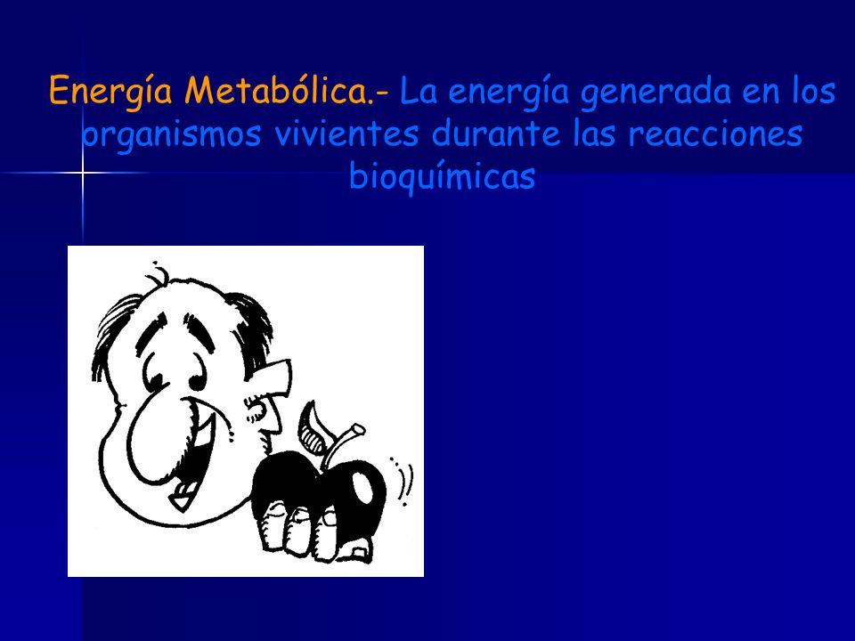 Energía Metabólica.- La energía generada en los organismos vivientes durante las reacciones bioquímicas