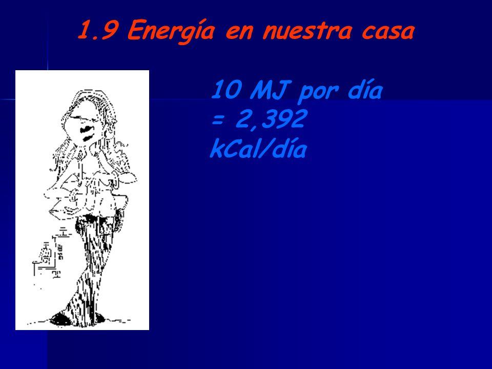 1.9 Energía en nuestra casa