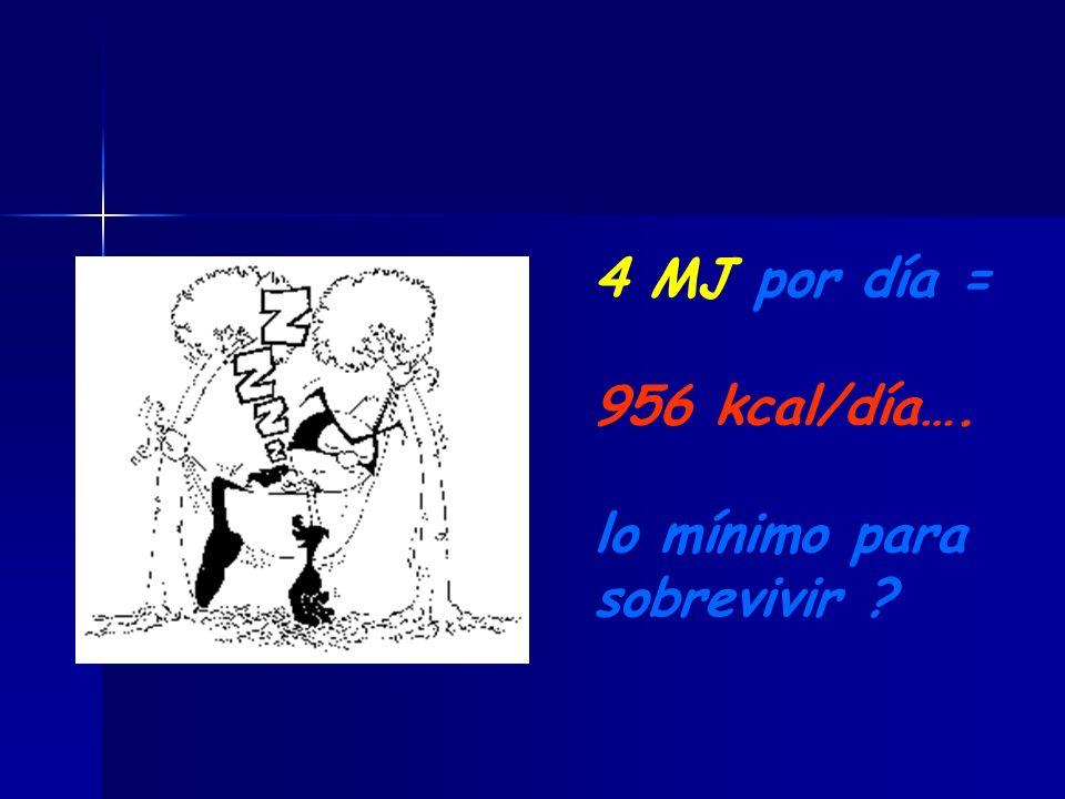 4 MJ por día = 956 kcal/día…. lo mínimo para sobrevivir