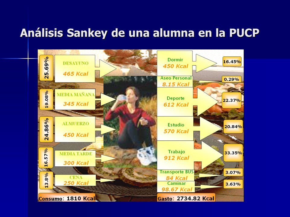 Análisis Sankey de una alumna en la PUCP