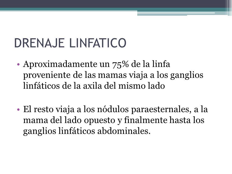 DRENAJE LINFATICO Aproximadamente un 75% de la linfa proveniente de las mamas viaja a los ganglios linfáticos de la axila del mismo lado.