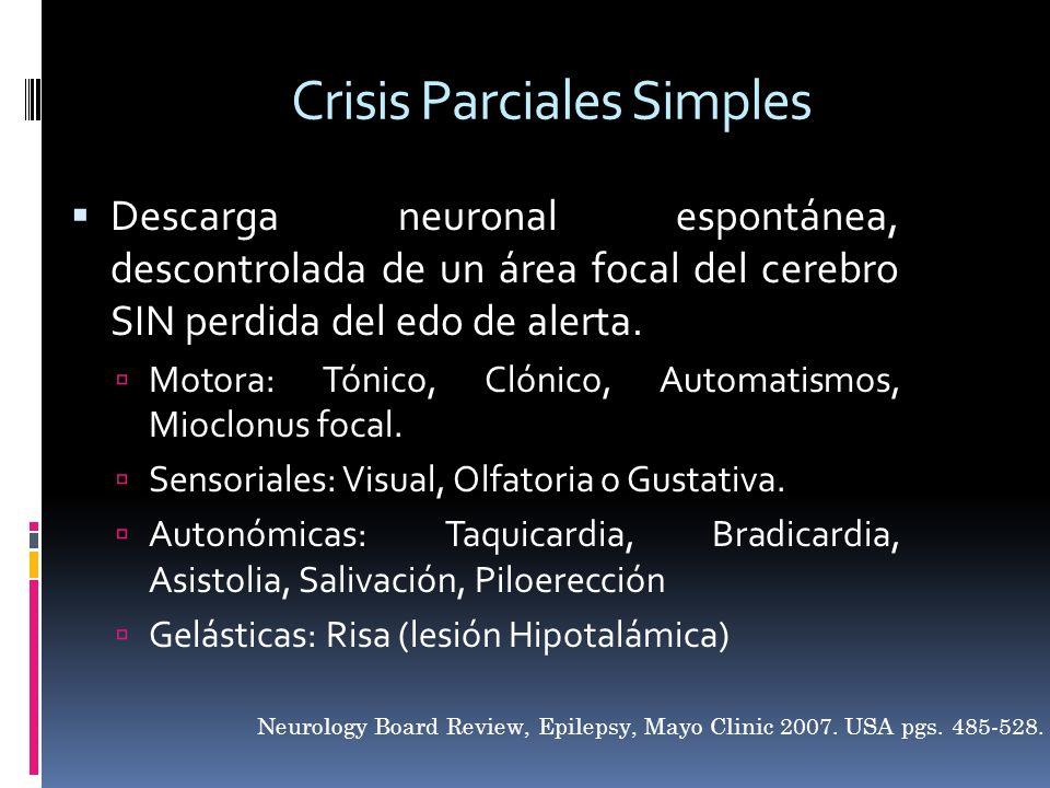 Crisis Parciales Simples